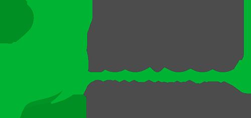 Eco Fogo